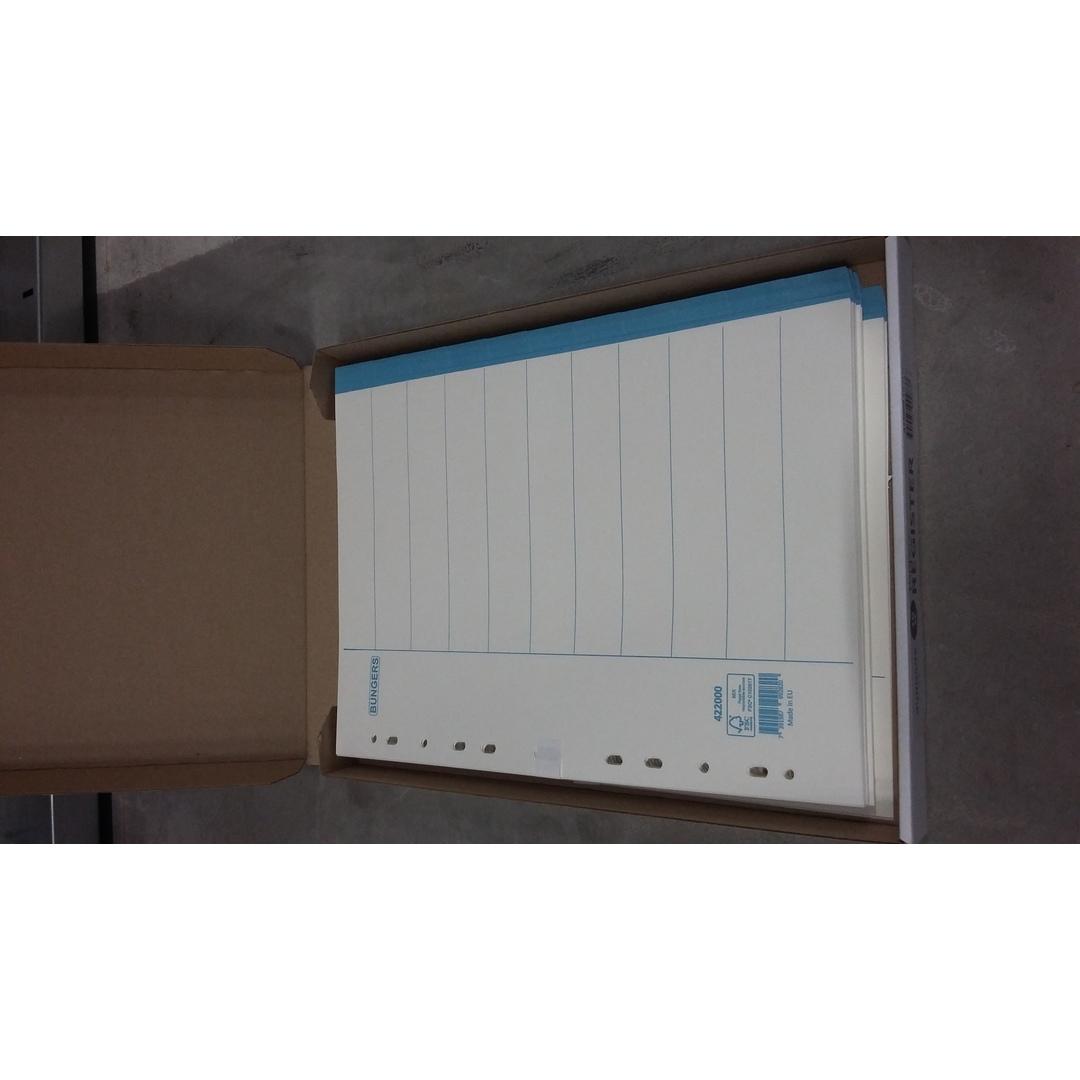 Divider carton A4 10 tabs blue tabs