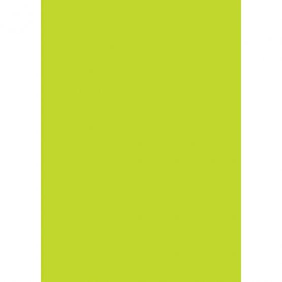 Paper A4 170gr grassgreen 10/pack