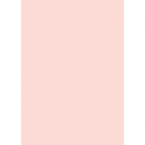 Cardboard A4 300g pink (10)