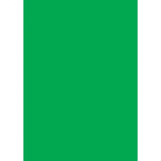 Cardboard A4 300g green (10)