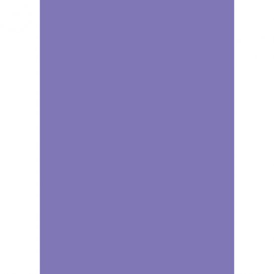 Cardboard A4 300g purple (10)