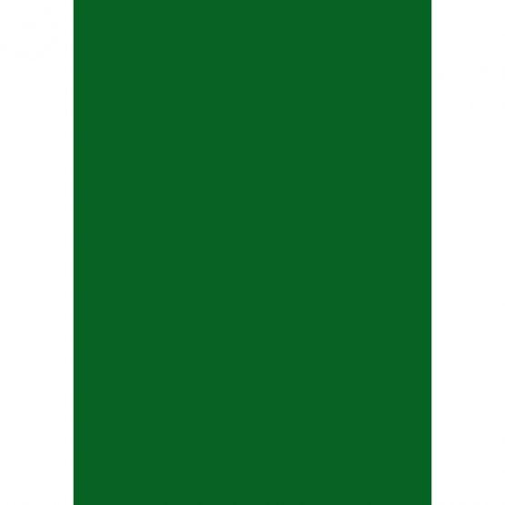 Cardboard A4 300g dark green (10)