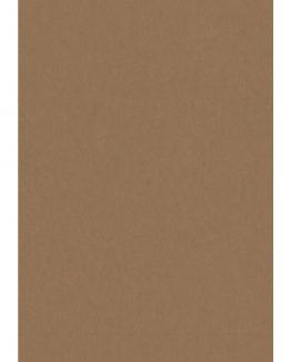 Cardboard 50x70 300g light brown