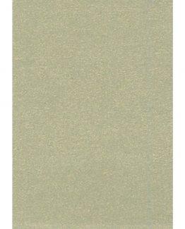 Cardboard 50x70 300g gold