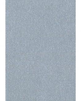 Cardboard 50x70 300g silver