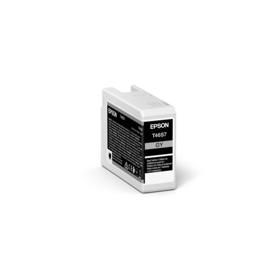 C13T46S700 Gray Ink Cartridge