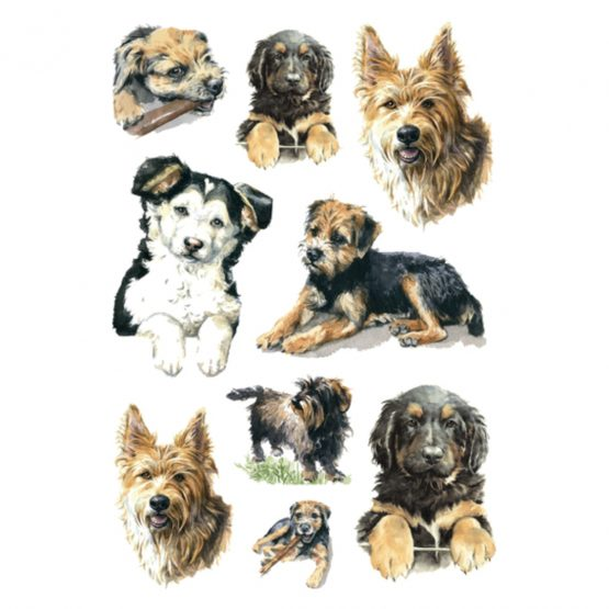 Herma stickers Decor dogs (3)