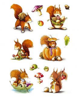 Herma stickers Decor brownsquirrel (3)