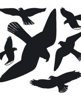 Herma stickers Home warning birds black (6)