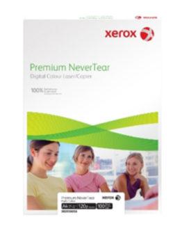 A3 Xerox Nevertear polyester (100) 120µ